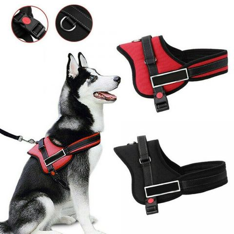Dog Pulling Chest Harness